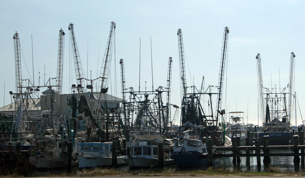 A working fleet in Gulfport.
