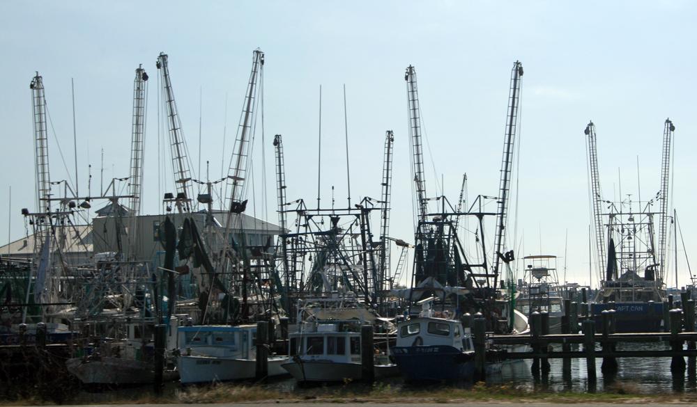 A working fleet in Gulfport.